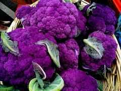 紫色カリフラワー 20粒