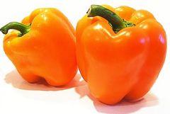 オレンジピーマン USDA 有機認証済 3粒