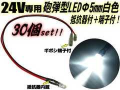 24V�p �C�e�^ LED 5mm ��R�����{�[�q�t �� 30��/�z���R�t