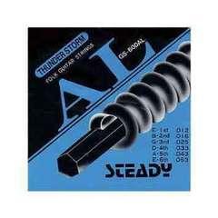 新品 STEADY アコースティックギター用セット弦 L 切手払い可能