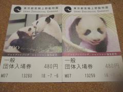 上野動物園  入園券 シャンシャン誕生記念 2枚