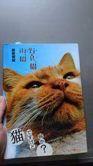 美品★野良っ猫 街っ猫「猫ですけど何か?」色んなにゃんこ本