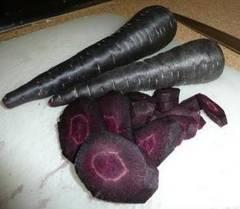 深紫色人参  新品種 15粒