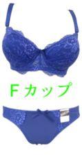 【Fカップ】・ネイビー■レースブラジャー&ショーツ