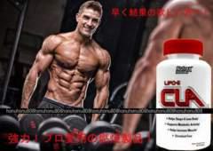 プロ愛用 脂肪燃焼 ボディビル サプリメント 強力 CLA 共役リノール酸 ダイエット