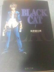 送料込・矢吹健太郎/BLACK CAT 文庫版全12巻