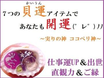ココペリ貝運★仕事・出世・カン・ご縁★迅速効果★パワーストーン/占