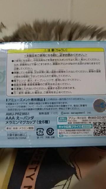 AAA・え〜パンダ・メラニン マグカップ・緑 浦田 < タレントグッズの