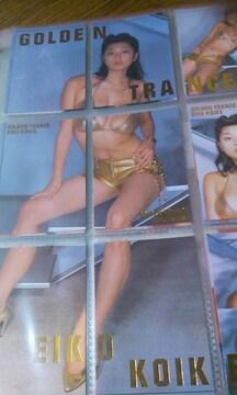 小池栄子トレカ〜45枚セット