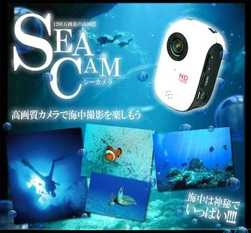 ¢1200万画像 防水仕様 スポーツカメラ MI-DV1000