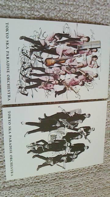 [非売] 東京スカパラダイスオーケストラ 甲本ヒロトポストカード  < タレントグッズの