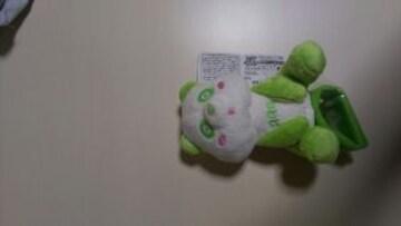 AAA え〜パンダ肩のりぬいぐるみ 緑色
