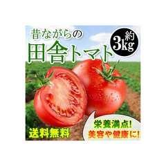 残りわずか!★春旬トマト★大豊作セール!昔ながらの田舎トマト約3kg