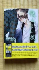 12月新刊 憎らしい彼 美しい彼2  凪良ゆう/葛西リカコ