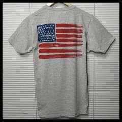 フルーツオブザルーム 星条旗USA Tシャツ/GR/M
