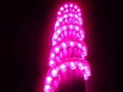 超発光/防水 LEDチューブ 48�p ピンク/桃