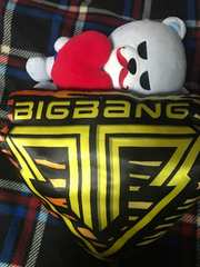 レア品貴重★BIGBANG★ALIVE TOUR限定クッション☆両面使用可