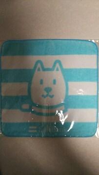 お父さん犬 カイくん 北海道犬 ソフトバンク お父さんプチタオル