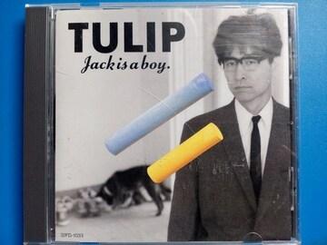TULIP JACK IS A BOY