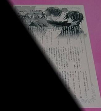 ナツ之えだまめ 猫耳カレシの愛されレッスン コミコミスタジオ購入特典ペーパー