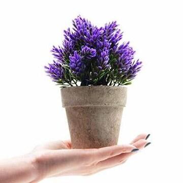 TOSSOW 人工観葉植物 造花 フェイクグリーン 紙パルプ鉢 フェ