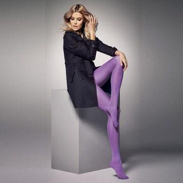 大サイズ マットな厚手マイクロファイバータイツ 深紫