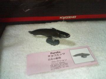 フルタ 日本の動物コレクション  クラシック  ビワコオオナマズ
