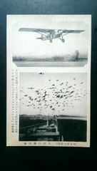 戦前繪葉書/東京日日新聞社の伝書鳩とライアン單葉飛行機