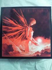 新世紀 エヴァンゲリオン 劇場版 BOX 本 ビデオ フィギュア プラモ カード テレカ