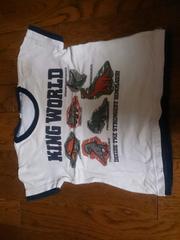 100 恐竜のティーシャツ