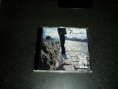 CD「AIR(車谷浩司)/フィライングカラーズ(FLYING COLORS)」