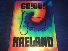 <即決>木村カエラ/GO!GO! KAELAND 2014-10years anniversary