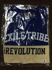 EXILETRIBE TOW2014会場限定Tシャツ今市隆二登坂広臣岩田剛典☆