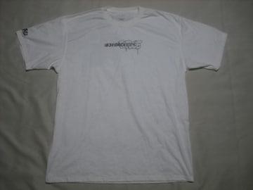 rt619 男 NIKE ナイキ 半袖Tシャツ Lサイズ 白 バックプリント