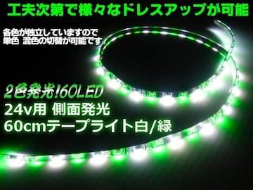 24Vトラック用/側面2色発光SMDLEDテープライト/60cm/白色⇔緑色
