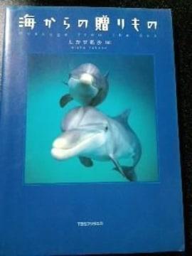 写真集【海からの贈り物】生き物たち