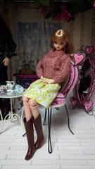 ジェニーちゃんのスカート