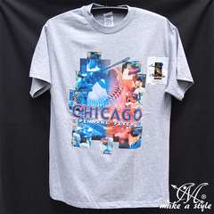 CHICAGO CUBS MLB シカゴ カブス TEE Tシャツ 灰 2008 183 XL
