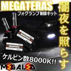 Mオク】アコードワゴンCM1/2/3系/フォグランプHIDキット/H11/8000K