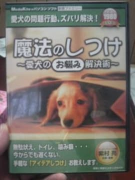 ☆魔法のしつけ☆愛犬のお悩み解決術〜問題解決ズバリ解決!
