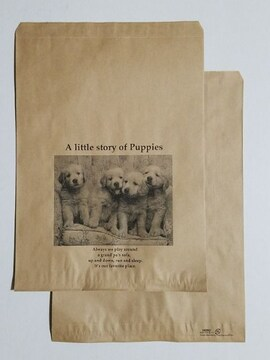 R20サイズ平袋☆リトルストーリー30枚☆B5が余裕で入る紙袋