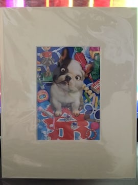 村松誠 [お祭りフレンチブルドッグ] 額付きイラストポスター