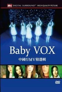 新品 ベイビーボックス BABY VOX ミュージックビデオ DVD