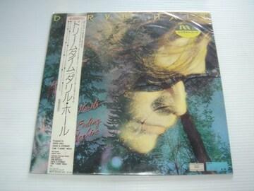 DARYL HALLダリル・ホールドリームタイムLPレコード国内盤中古品